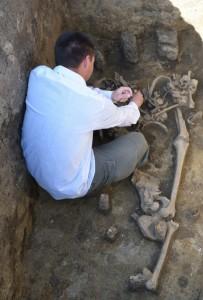 Germán harcos sírja Hódmezővásárhelynél